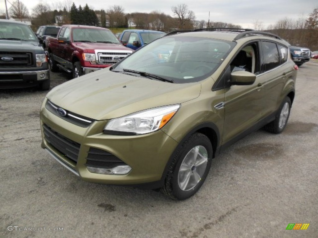 Ginger Ale Metallic 2013 Ford Escape Se 1 6l Ecoboost 4wd Exterior Photo 74342542