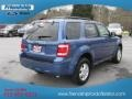 2009 Sport Blue Metallic Ford Escape XLT  photo #7