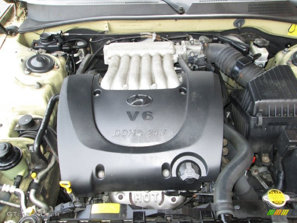 2004 Hyundai Sonata V6 Engine Photos