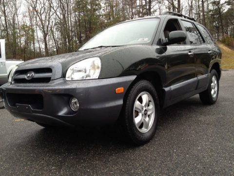 2006 hyundai santa fe limited data info and specs. Black Bedroom Furniture Sets. Home Design Ideas