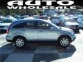 2009 Glacier Blue Metallic Honda CR-V EX-L  photo #3