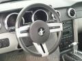 2007 Satin Silver Metallic Ford Mustang V6 Deluxe Coupe  photo #16