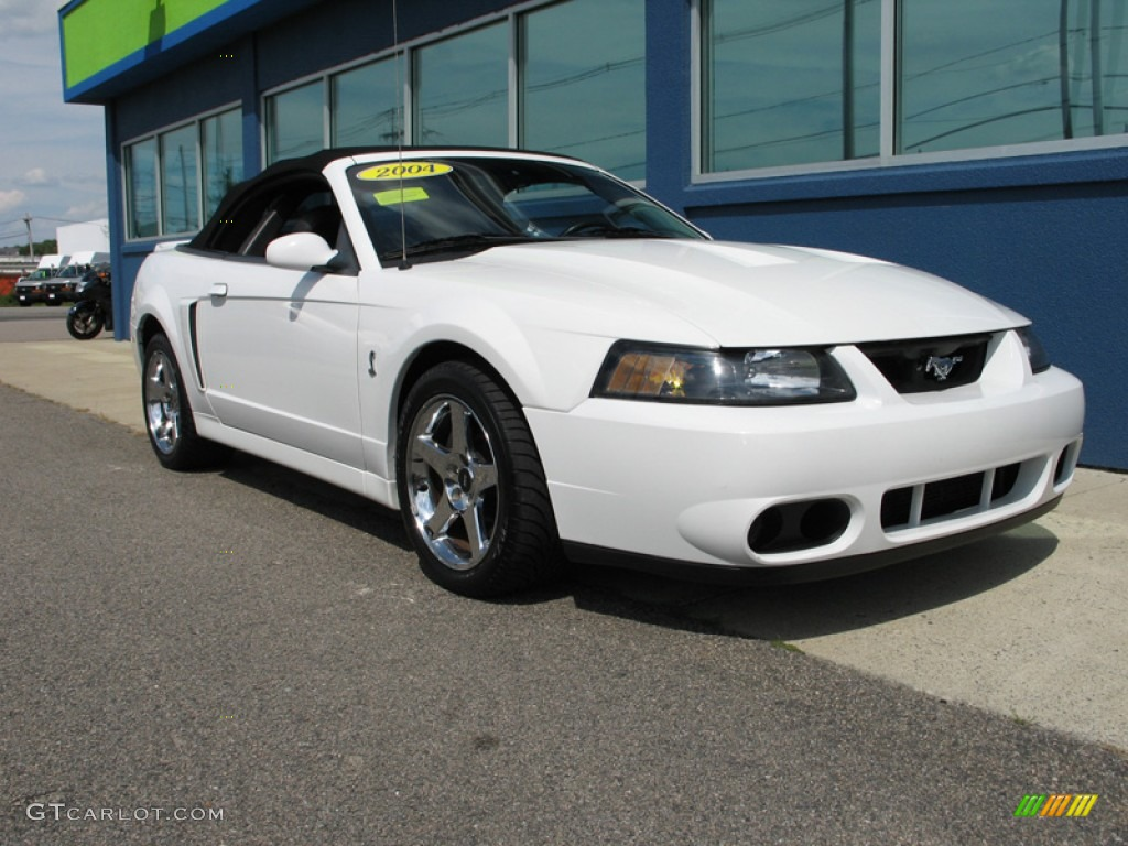 Oxford White 2004 Ford Mustang Cobra Convertible Exterior ...