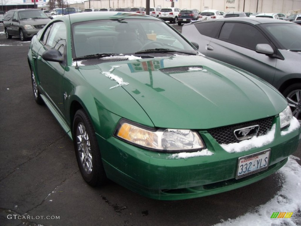 1999 Mustang V6 Coupe - Electric Green Metallic / Light Graphite photo #15