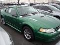 1999 Electric Green Metallic Ford Mustang V6 Coupe  photo #17