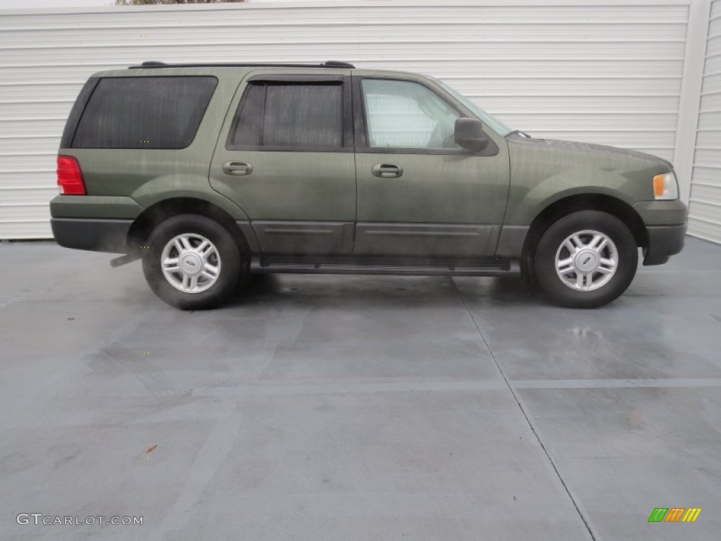 estate green metallic 2004 ford expedition xlt exterior. Black Bedroom Furniture Sets. Home Design Ideas