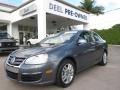 Platinum Grey Metallic 2010 Volkswagen Jetta TDI Sedan