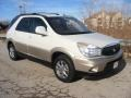 Cappuccino Frost Metallic 2004 Buick Rendezvous CXL AWD