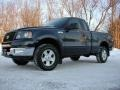 True Blue Metallic 2004 Ford F150 XLT Regular Cab 4x4