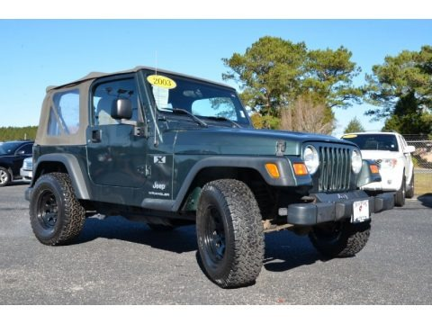 2003 jeep wrangler x 4x4 data info and specs. Black Bedroom Furniture Sets. Home Design Ideas