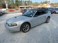 Satin Silver Metallic 2002 Ford Mustang Gallery
