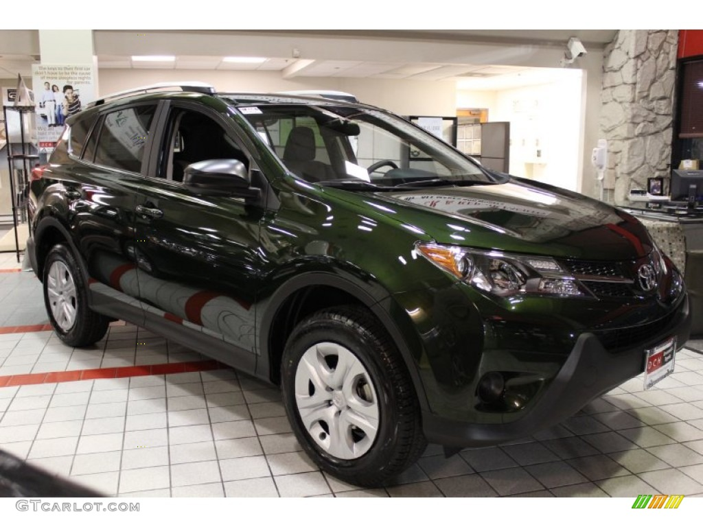 2013 Spruce Green Mica Toyota Rav4 Le Awd 76740683