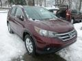 2013 Basque Red Pearl II Honda CR-V EX-L AWD  photo #6