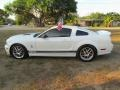 2007 Performance White Ford Mustang GT Premium Coupe  photo #28