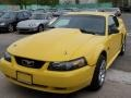 Chrome Yellow 1999 Ford Mustang Gallery