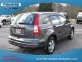 2010 Polished Metal Metallic Honda CR-V LX  photo #7