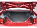 2003 Ford Mustang Dark Charcoal Interior Trunk Photo