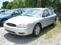 Silver Frost Metallic 2006 Ford Taurus Gallery