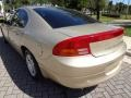 2001 Champagne Pearl Dodge Intrepid ES  photo #6