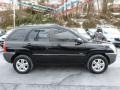Black Cherry - Sportage LX V6 4WD Photo No. 13
