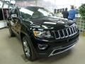 Black Forest Green Pearl - Grand Cherokee Limited 4x4 Photo No. 5