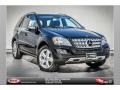 Black 2010 Mercedes-Benz ML 350