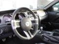 2010 Ford Mustang Charcoal Black/Cashmere Interior Steering Wheel Photo