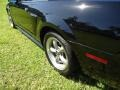 2001 Black Ford Mustang GT Coupe  photo #20