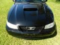 2001 Black Ford Mustang GT Coupe  photo #27