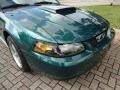 2002 Tropic Green Metallic Ford Mustang GT Coupe  photo #15