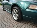 2002 Tropic Green Metallic Ford Mustang GT Coupe  photo #17