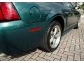 2002 Tropic Green Metallic Ford Mustang GT Coupe  photo #31