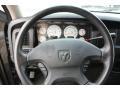 2002 Graphite Metallic Dodge Ram 1500 ST Quad Cab  photo #13