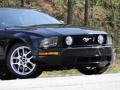2007 Black Ford Mustang GT Deluxe Coupe  photo #20