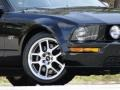 2007 Black Ford Mustang GT Deluxe Coupe  photo #21