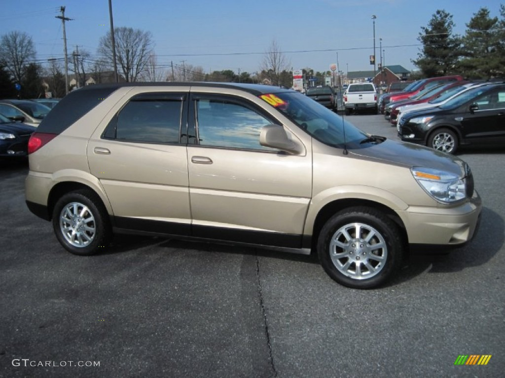 cashmere metallic 2006 buick rendezvous cxl exterior photo. Cars Review. Best American Auto & Cars Review