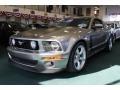 Vapor Silver Metallic 2008 Ford Mustang Gallery