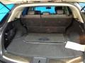 Graphite Trunk Photo for 2010 Infiniti FX #79768144