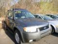 Dark Shadow Grey Metallic 2003 Ford Escape XLT V6 4WD