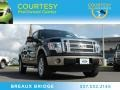 Tuxedo Black Metallic 2012 Ford F150 Lariat SuperCrew 4x4
