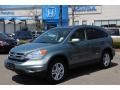 2010 Opal Sage Metallic Honda CR-V EX-L AWD  photo #1