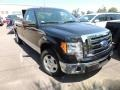Tuxedo Black 2010 Ford F150 Gallery