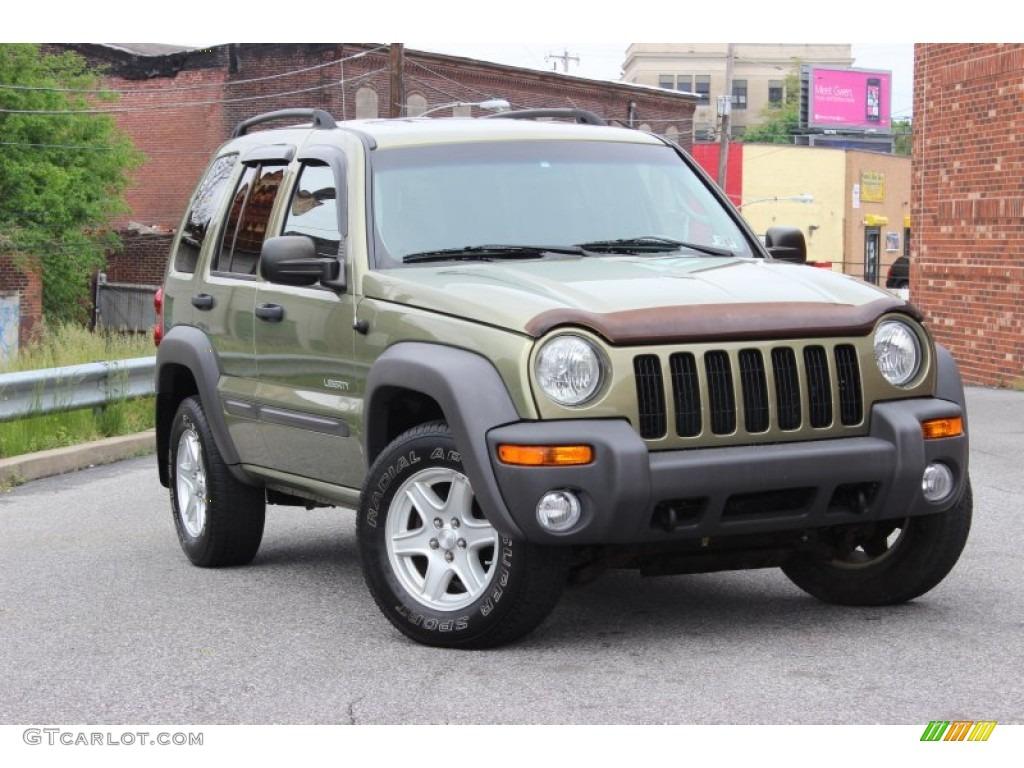 2004 cactus green pearl jeep liberty sport 4x4 #80948505