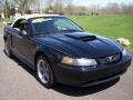 2002 Black Ford Mustang GT Convertible  photo #15