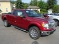 Ruby Red Metallic 2013 Ford F150 Gallery