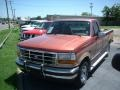 Desert Copper Metallic 1994 Ford F150 Gallery