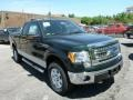 Green Gem Metallic 2013 Ford F150 Gallery