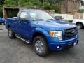 Blue Flame Metallic - F150 STX Regular Cab 4x4 Photo No. 2