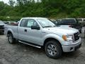 Ingot Silver Metallic 2013 Ford F150 Gallery