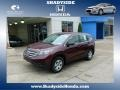 2012 Basque Red Pearl II Honda CR-V LX 4WD  photo #1